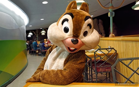 """Chip is (obviously) one of the characters you will meet at """"Chip n' Dales"""" Harvest Feast at the Garden Grill Restaurant."""