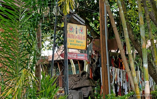 """Looking up at the main Drinkwallah sign while sitting in the """"lower garden"""" area."""