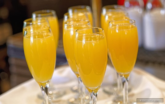 """Mimosas anyone? The half sparkling wine, half orange juice beverage is offered to anyone """"of age"""" at the Parisian Breakfast, almost as soon as you sit down!"""