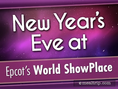 New Year's Eve at Epcot World ShowPlace Reviews and Photos