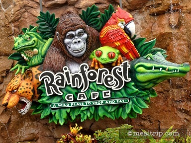 Rainforest Cafe® at Disney Springs Marketplace Reviews and Photos