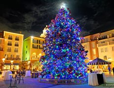 Holiday Harbor Nights Tree in the Piazza Courtyard